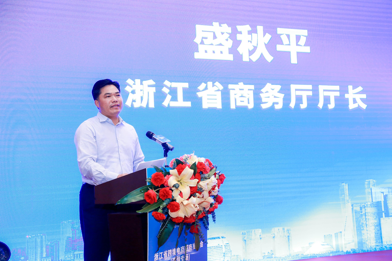 中国电商和独立站