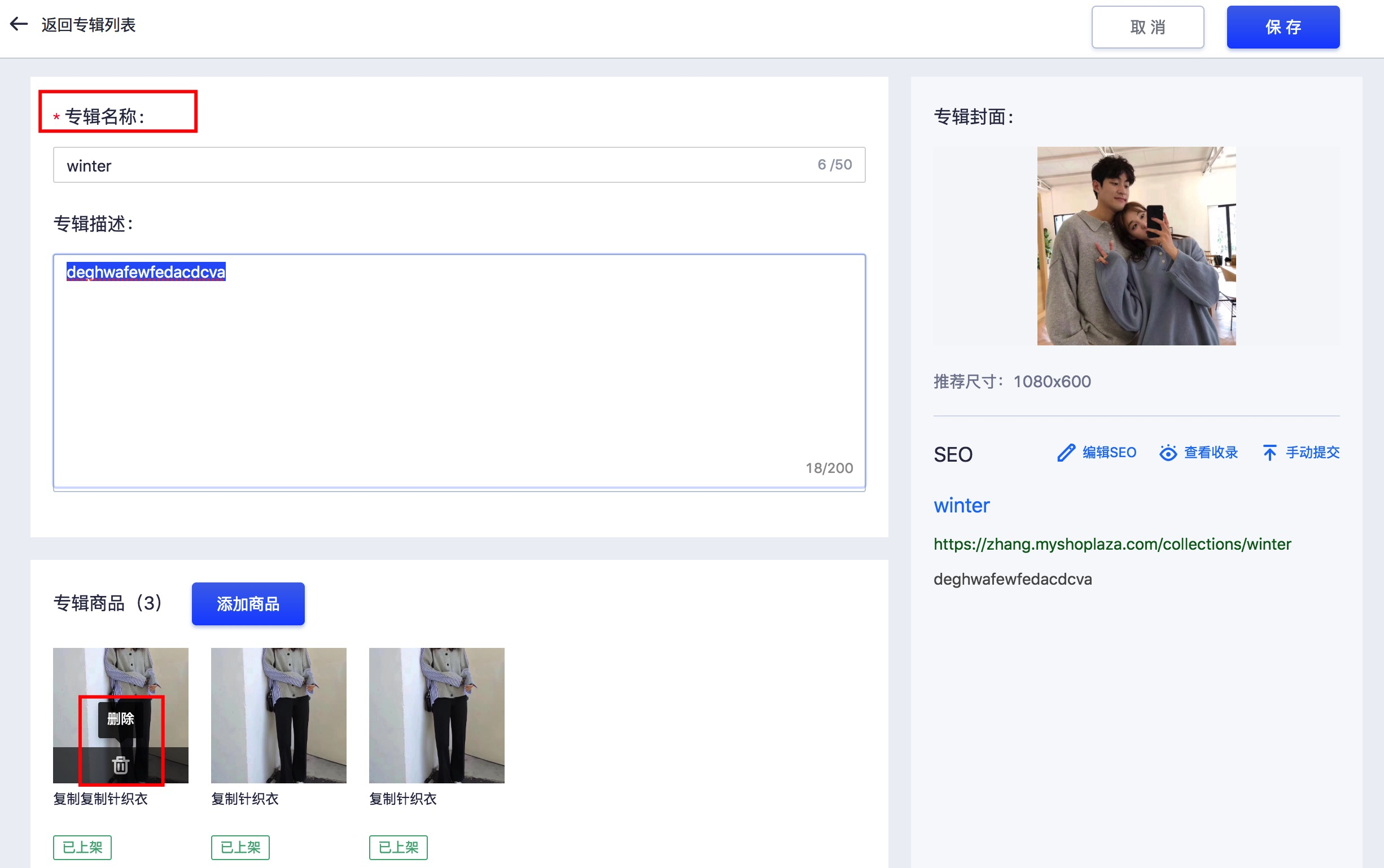 独立站店铺商品专辑搜索功能